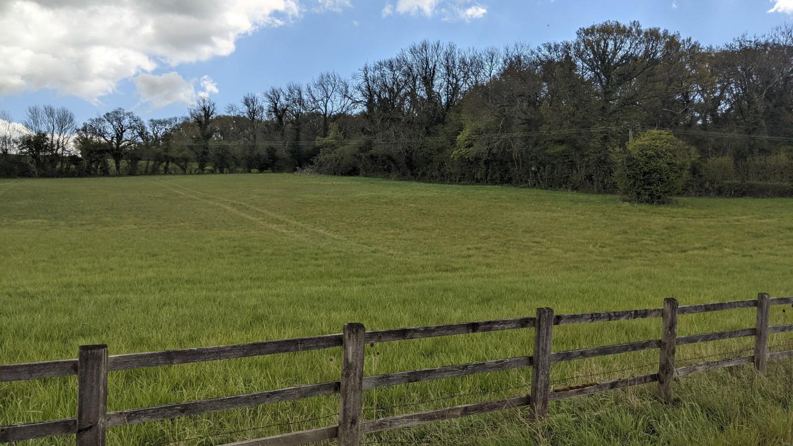 Lot 1 Fence (Main)